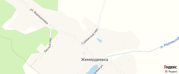 Суражский переулок на карте деревни Жемердеевки с номерами домов