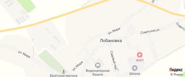 Улица Мира на карте села Лобановки с номерами домов