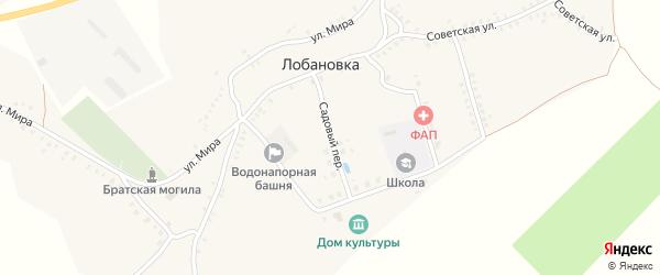 Садовый переулок на карте села Лобановки с номерами домов