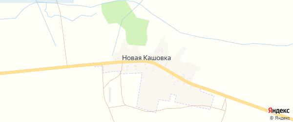 Шоссейная улица на карте деревни Новой Кашовки с номерами домов