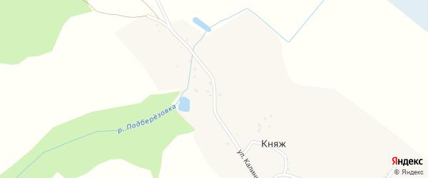 Улица Калинина на карте деревни Княжа с номерами домов