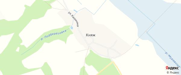 Карта деревни Княжа в Брянской области с улицами и номерами домов