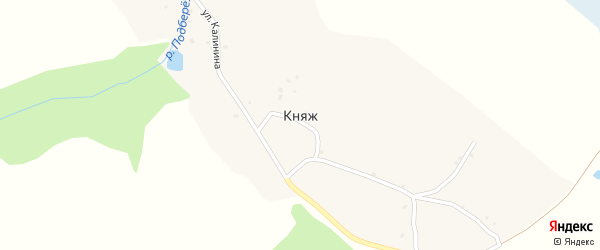 Безымянный переулок на карте деревни Княжа с номерами домов
