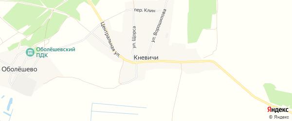 Карта села Кневичей в Брянской области с улицами и номерами домов