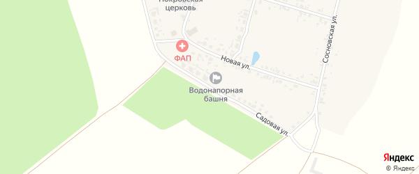 Садовая улица на карте села Сосновки с номерами домов