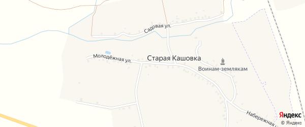 Молодежная улица на карте деревни Старой Кашовки с номерами домов