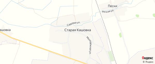 Карта деревни Старой Кашовки в Брянской области с улицами и номерами домов