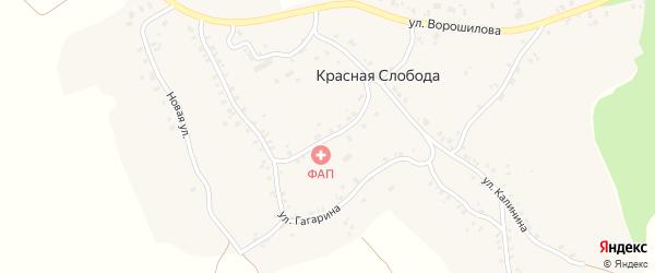 Улица Лейтенанта Скрипова на карте деревни Красной Слободы с номерами домов