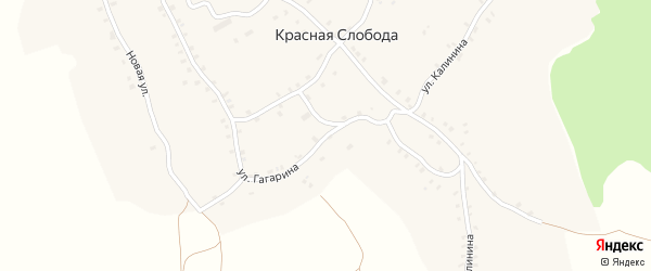 Улица Гагарина на карте деревни Красной Слободы с номерами домов