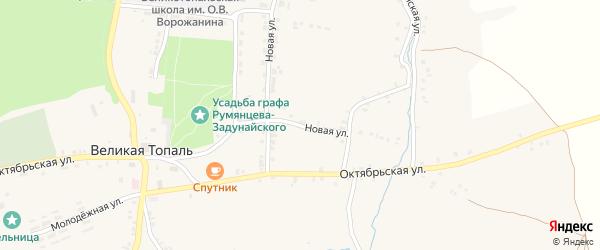 Новая улица на карте села Великой Топали с номерами домов