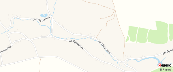 Улица Пушкина на карте села Великой Топали с номерами домов
