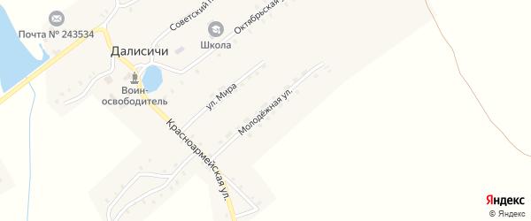 Молодежная улица на карте села Далисичи с номерами домов