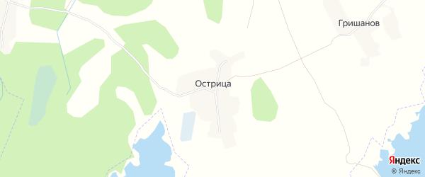 Карта поселка Острицы в Брянской области с улицами и номерами домов