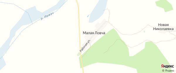 Карта деревни Малой Ловча в Брянской области с улицами и номерами домов