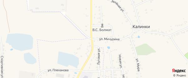 Улица Мичурина на карте деревни Калинки с номерами домов