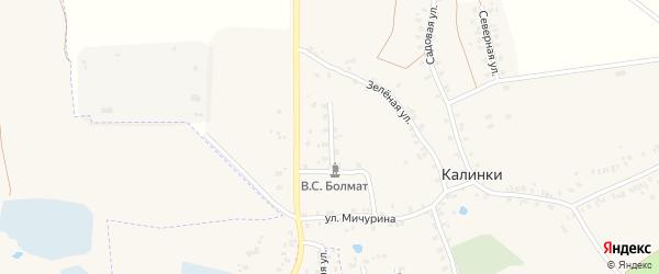 Улица Болмата на карте деревни Калинки с номерами домов