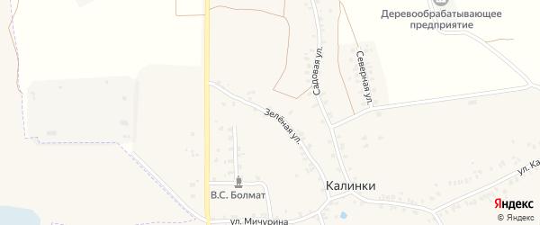 Зеленая улица на карте деревни Калинки с номерами домов