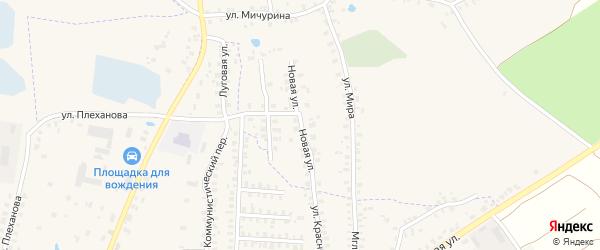 Новая улица на карте деревни Калинки с номерами домов