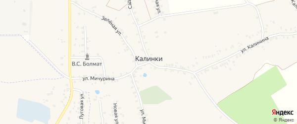 Ново-Мглинской переулок на карте деревни Калинки с номерами домов