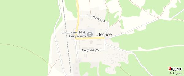 Школьная улица на карте поселка Лесного с номерами домов
