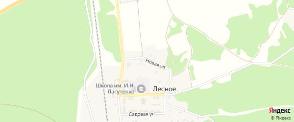 Новая улица на карте поселка Лесного с номерами домов
