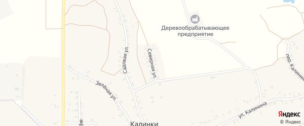 Северная улица на карте деревни Калинки с номерами домов