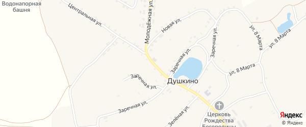 Центральная улица на карте села Душкино с номерами домов