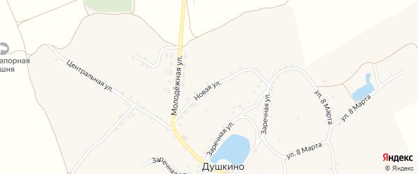 Новая улица на карте села Душкино с номерами домов