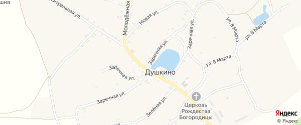 Заречная улица на карте села Душкино с номерами домов