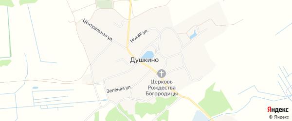 Карта села Душкино в Брянской области с улицами и номерами домов