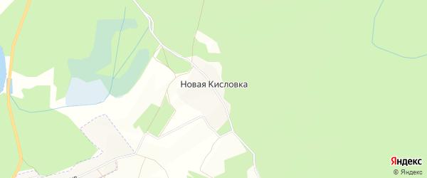 Карта деревни Новой Кисловки в Брянской области с улицами и номерами домов