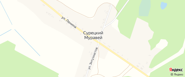 Улица Ленина на карте поселка Сурецкого Муравья с номерами домов