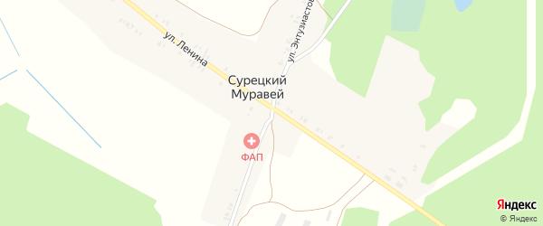 Улица Энтузиастов на карте поселка Сурецкого Муравья с номерами домов