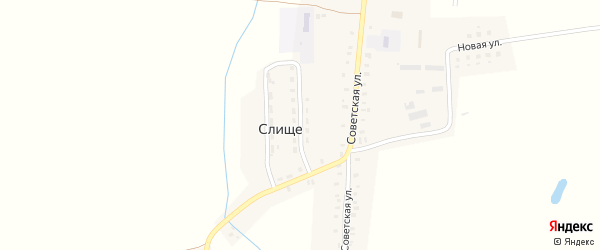 Молодежная улица на карте деревни Слища с номерами домов