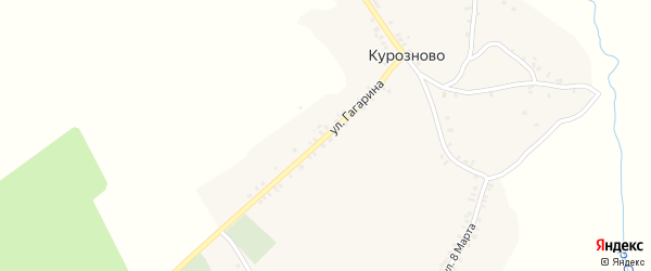 Улица Гагарина на карте села Курозново с номерами домов