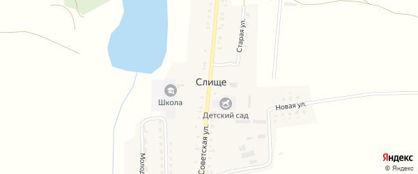 Советская улица на карте деревни Слища с номерами домов