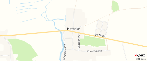 Карта села Истопки в Брянской области с улицами и номерами домов