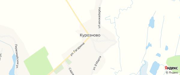 Карта села Курозново в Брянской области с улицами и номерами домов