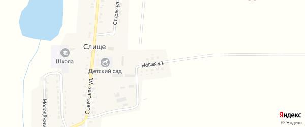 Новая улица на карте деревни Слища с номерами домов