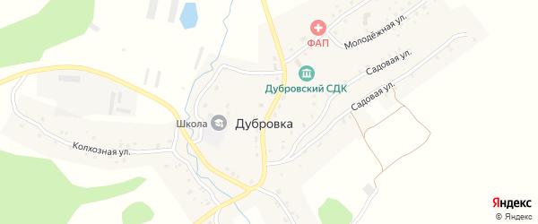 Центральная улица на карте села Дубровки с номерами домов