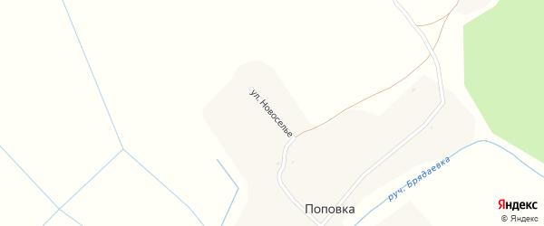 Улица Новоселье на карте деревни Поповки с номерами домов