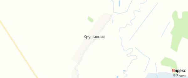 Карта поселка Крушинника в Брянской области с улицами и номерами домов