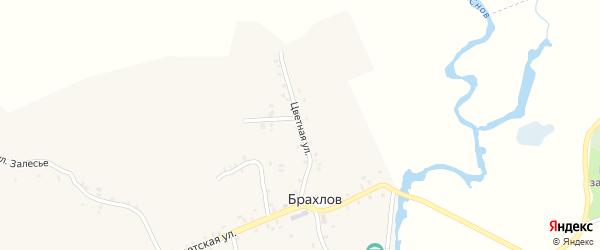Цветная улица на карте села Брахлова с номерами домов