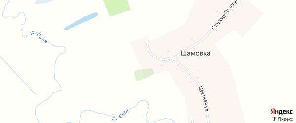 Стародубская улица на карте деревни Шамовки с номерами домов