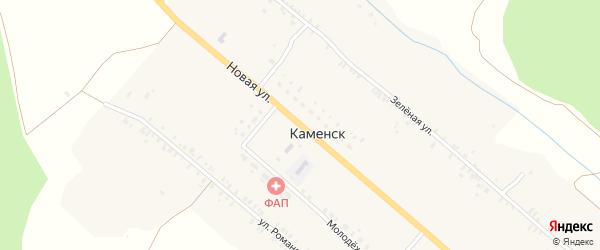 Новая улица на карте деревни Каменска с номерами домов