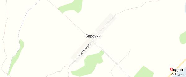 Карта деревни Барсуки в Брянской области с улицами и номерами домов