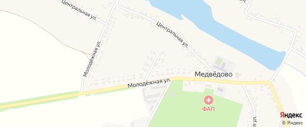 Молодежная улица на карте села Медведово с номерами домов