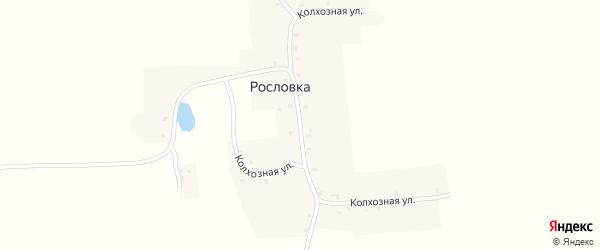 Колхозная улица на карте деревни Рословки с номерами домов