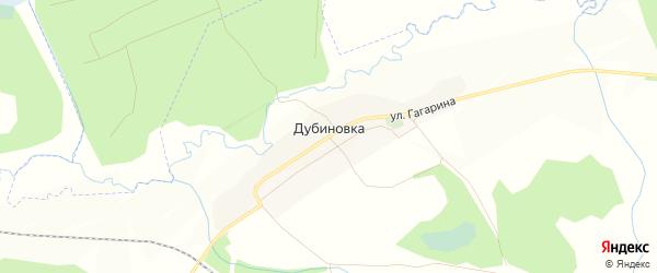 Карта деревни Дубиновки в Брянской области с улицами и номерами домов