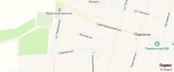Лесная улица на карте села Павличей с номерами домов